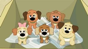 Les Puppies : l'Agence - Images