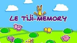 TiJi memory