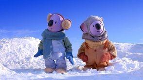 Buster en compagnie de son frère Franck dans la neige