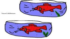 Comment font les poissons pour rester aussi longtemps sous l'eau ?