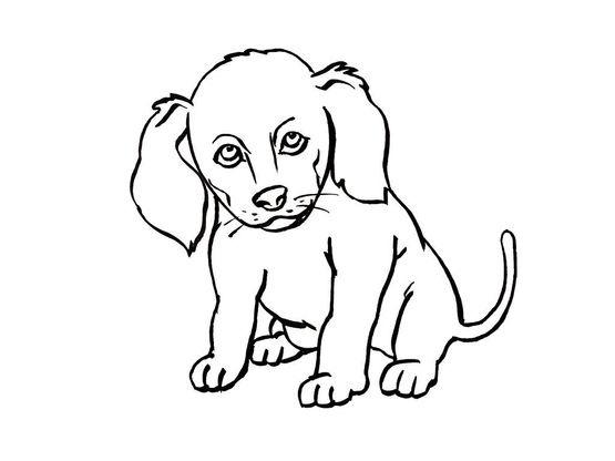 Coloriage a imprimer basset assis gratuit et colorier - Coloriage de chien a imprimer gratuit ...